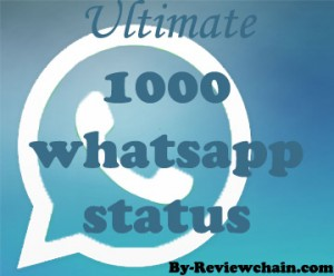Ultimate 1000 whatsapp status
